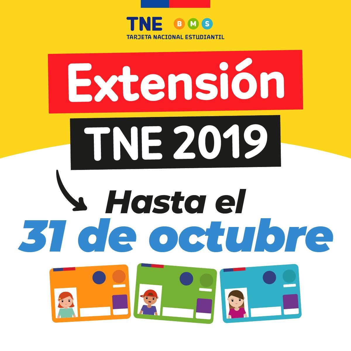 Renovación TNE 2020